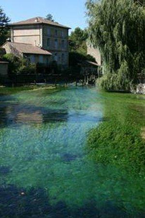 La Fontaine de Vaucluse: Green hues!