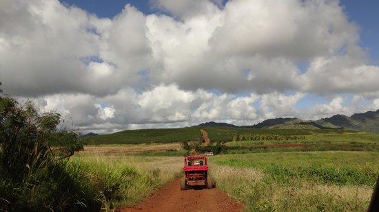 Kauai ATV Tours: ATV practice run
