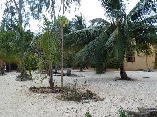"""Sunset Kendwa : In front of our """"Deluxe Beach Bungalow"""" NO BEACH"""