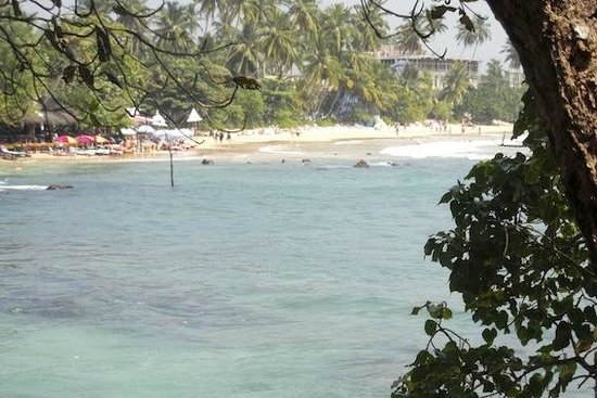 Number ONE Mirissa: View of Mirissa Beach from the Hotel