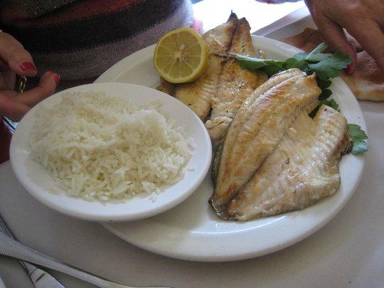 Ouda Restaurant: john dory