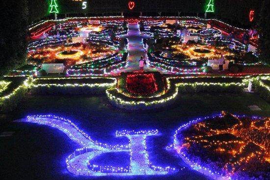 Hunter Valley Gardens Xmas lights