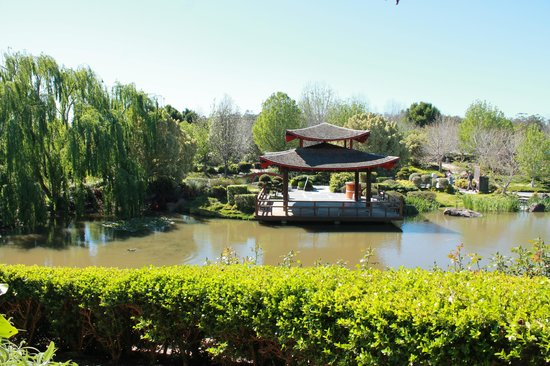 Hunter Valley Gardens during the day