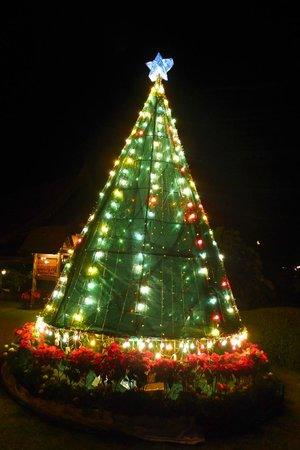 Champasak Grand Hotel: xmas tree