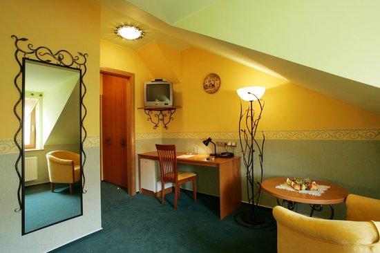 Hotel Roudna, Plzen: Room