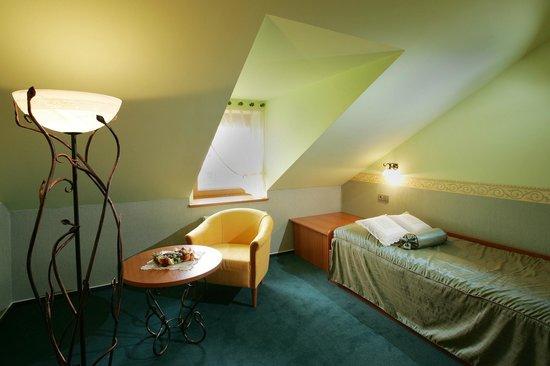 Hotel Roudna, Plzen: Single room