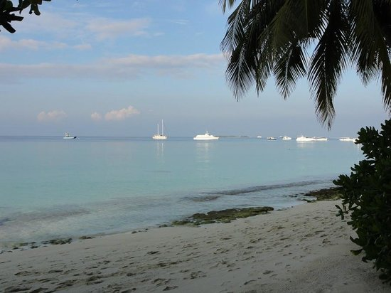 Kuramathi Island Resort: пляж