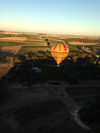 Barossa Valley Ballooning: passing the competitions balloon