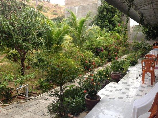 Diem Lien Guesthouse : Garden