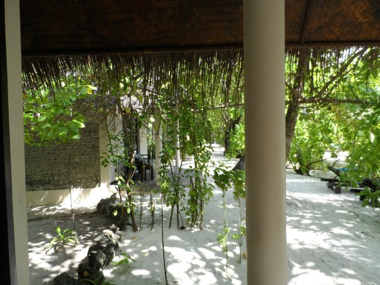 Ellaidhoo Maldives by Cinnamon : Bungalow on the beach