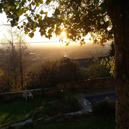 La Terre D'or : View over Beaune