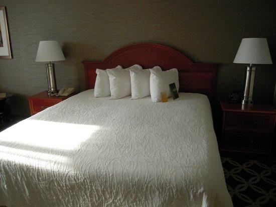 Hilton Garden Inn Chicago North Shore/Evanston: Room