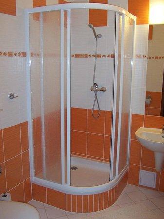 Hotel Palace: Bathroom
