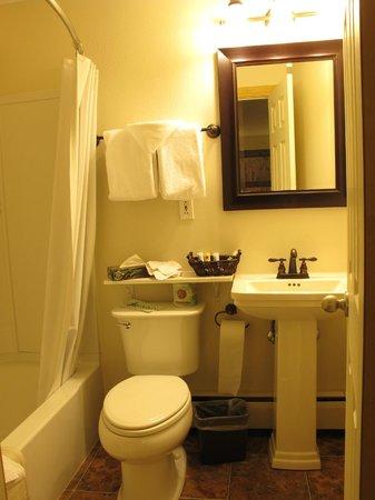 Discovery Lodge: the bathroom
