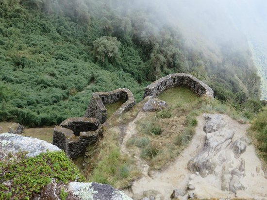 Camino Inca: Cloud rainforest