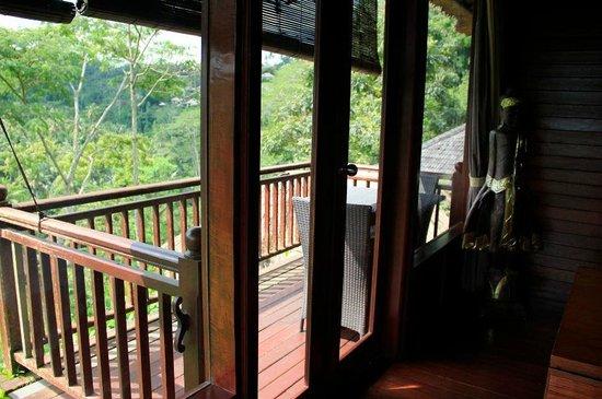 Kupu Kupu Barong Villas and Tree Spa: View from room
