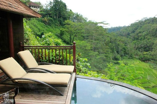 Kupu Kupu Barong Villas and Tree Spa: Pool View