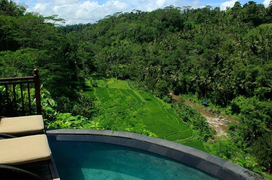 Kupu Kupu Barong Villas and Tree Spa: View from pool