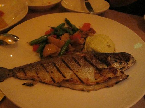 Passionfish: fish