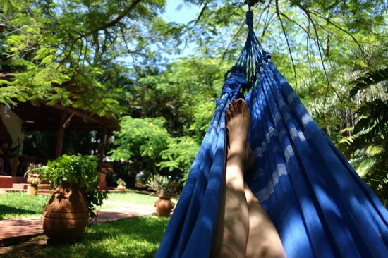 Guest House Puerto Iguazu: lying in the garden