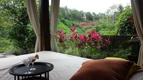 Natura Resort and Spa : View from the daybed