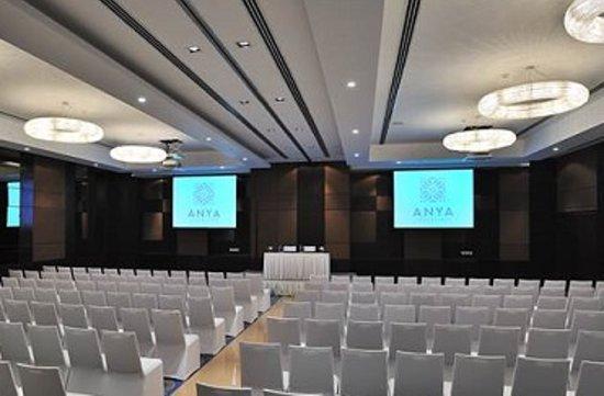 Anya Gurgaon, New Delhi NCR : Meetings & Events