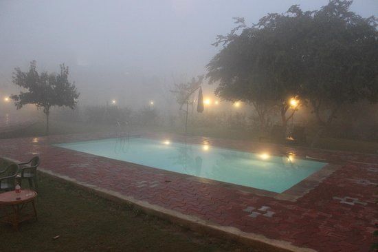 Hotel Chitvan : view of the pool