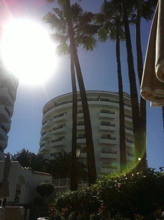 Hotel Servatur Waikiki: Una vista tumbada en la hamaca