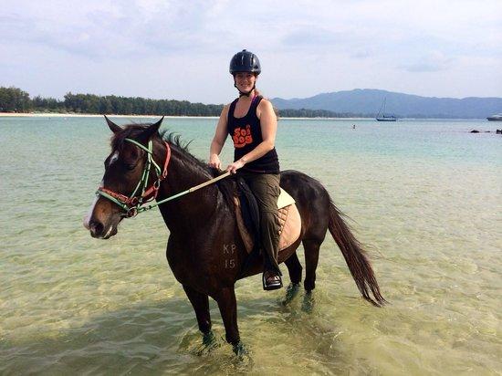 Phuket International Horse Club: Horse: Bonita