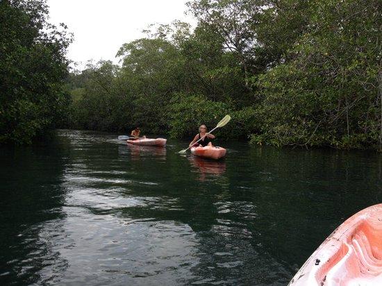 Vista Hermosa Boutique Bed & Breakfast: Kayaking