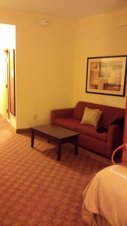 Comfort Suites Suffolk-Chesapeake: Sitting area