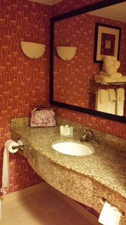 Comfort Suites Suffolk-Chesapeake : Bathroom