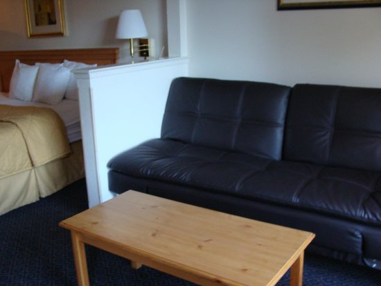 Comfort Inn & Suites Sequoia Kings Canyon: Soggiorno con divano
