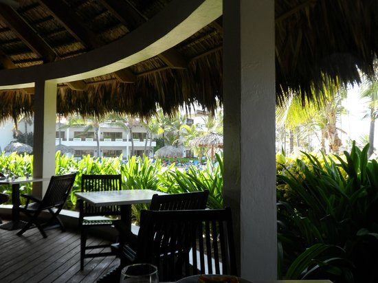 Occidental Grand Punta Cana: Occidental Grand! Amazing!