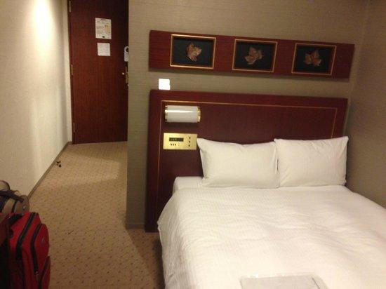 Hotel Villa Fontaine Jimbocho: Room view 2