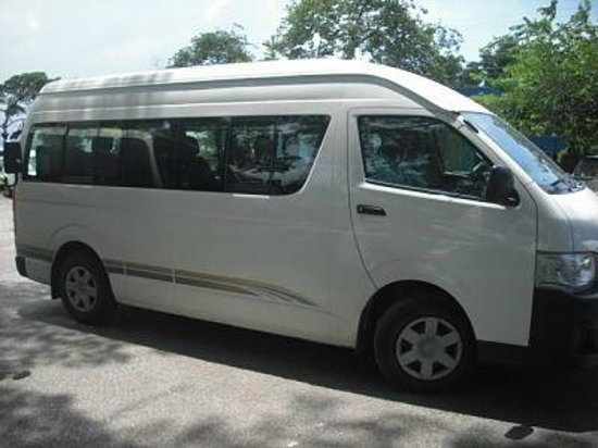 Paradise Palms Jamaica Tours:  Paradise Palms Jamaica Transportation