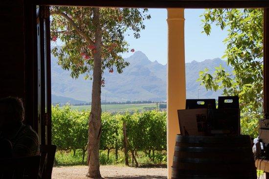 Lovane Boutique Wine Estate and Guest House: Blick aus dem Frühstücksraum