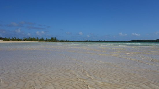 Chez Pierre Bahamas: Incredible beach