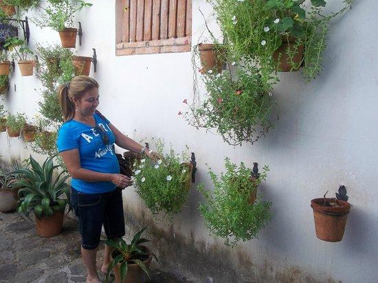 Hotel Granada: Vista de jardines