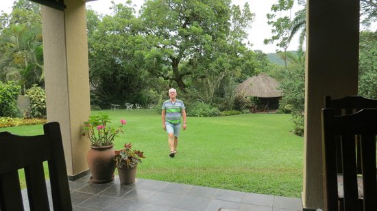 Elephant House: nice garden