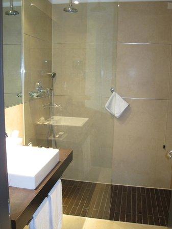 Savhotel: baño grande, la pega es q sin presión casi de agua. el agua caliente no sale bien caliente