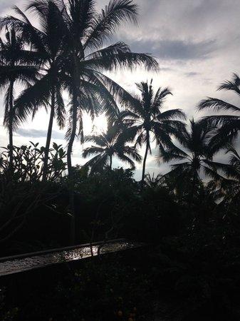The Samaya Bali Ubud: ホテル内