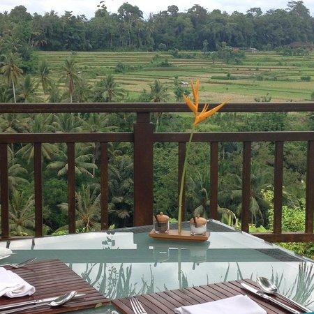The Samaya Bali Ubud: ダイニングルームからの眺め
