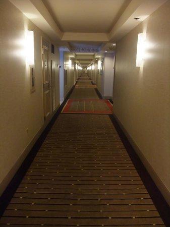 Hard Rock Hotel and Casino: Hotelflur
