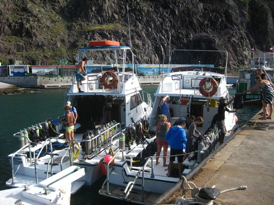 Sea Saba Advanced Dive Center: Dive Boats