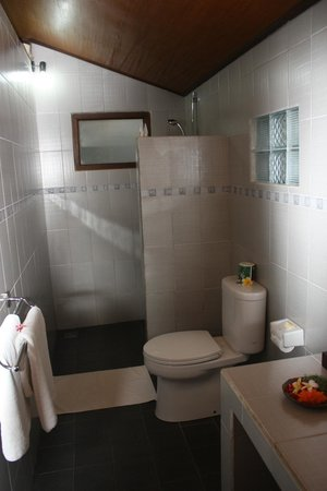 Sama's Cottages and Villas: Shower & toilet