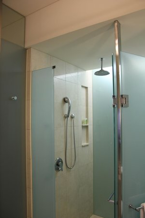 The Westin Sydney: Rainforest shower