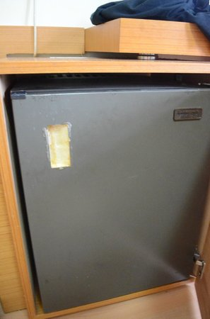 Grand Ons Hotel: fridge