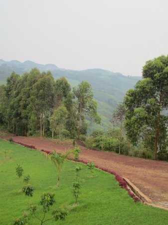 Nyungwe Top View Hill Hotel: The road leading up to the hotel