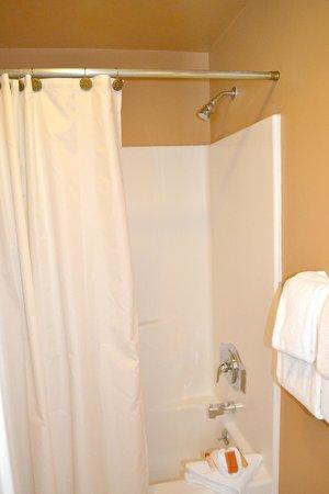 Miller Park Lodge: Bathroom